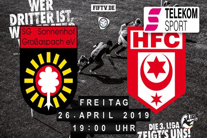 Sonnenhof Großaspach - Hallescher FC Spielankündigung