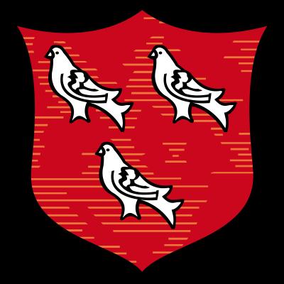 Dundalk FC - Logo