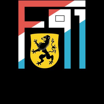 f91_duedelingen Logo