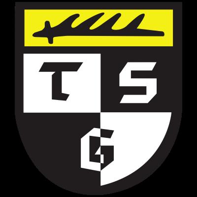 TSG Balingen - Logo